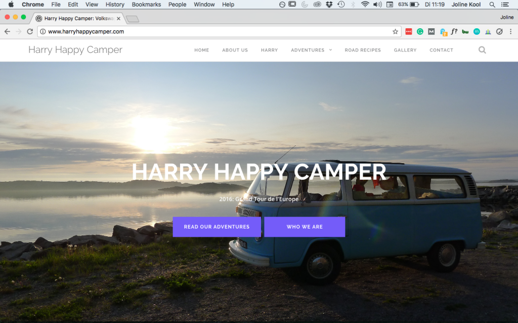 Website Harry Happy Camper
